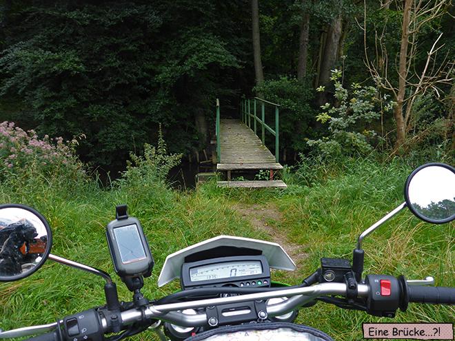 Fußgängerbrücke im Wald