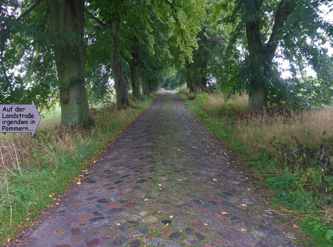 Kopfsteinpflaster Straße Polen