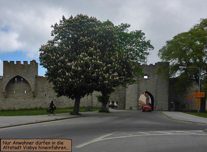 Visby Gotland Stadttor