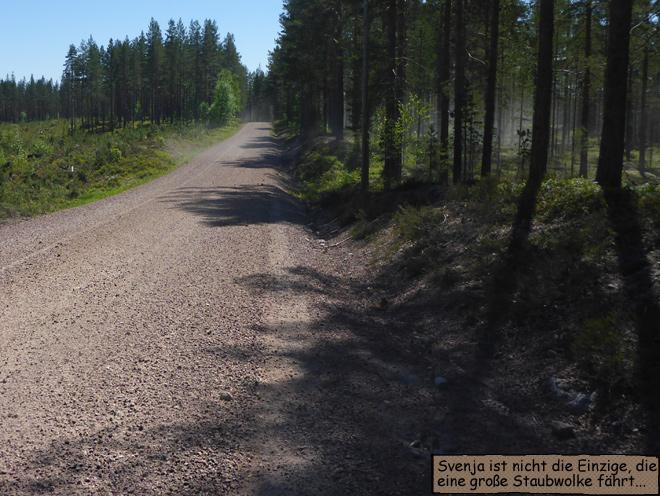 Waldweg Schweden Schotter