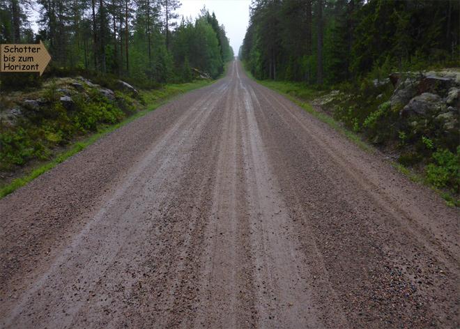 Piste Schweden im Wald