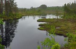 Wasserlandschaft in Schweden