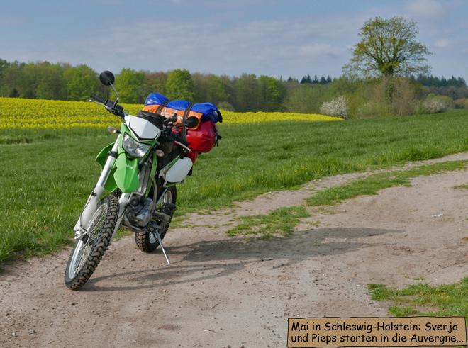 Schleswig Holstein Rapsfeld Motorrad
