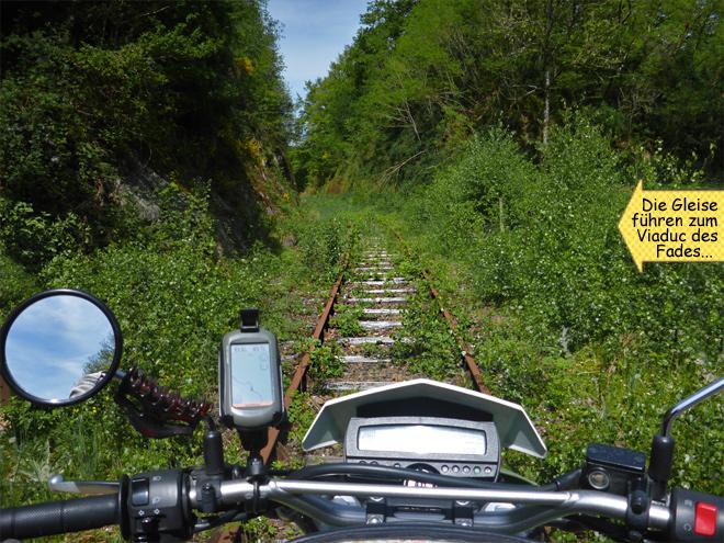 Alte überwachsene Eisenbahnschienen