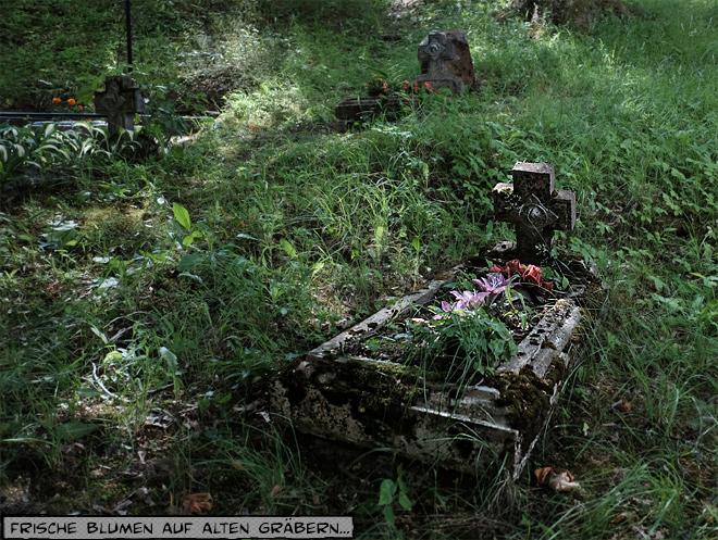 Ein altes Grab mit frischen Blumen