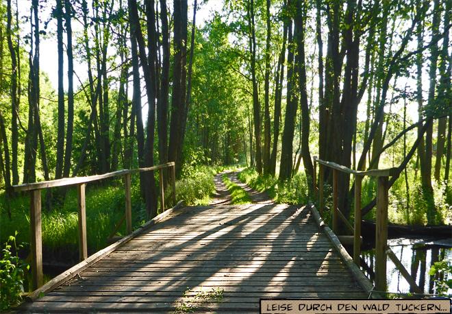 Hölzerne Brücke im Wald