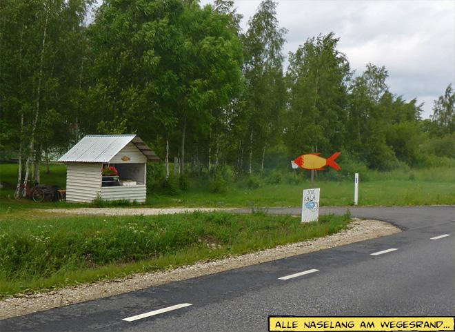 Hütte mit Fischverkauf am Straßenrand