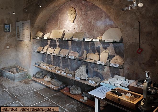 Limestone Museum Estonia