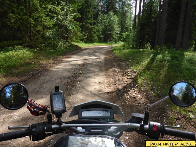 Motorrad auf Waldweg