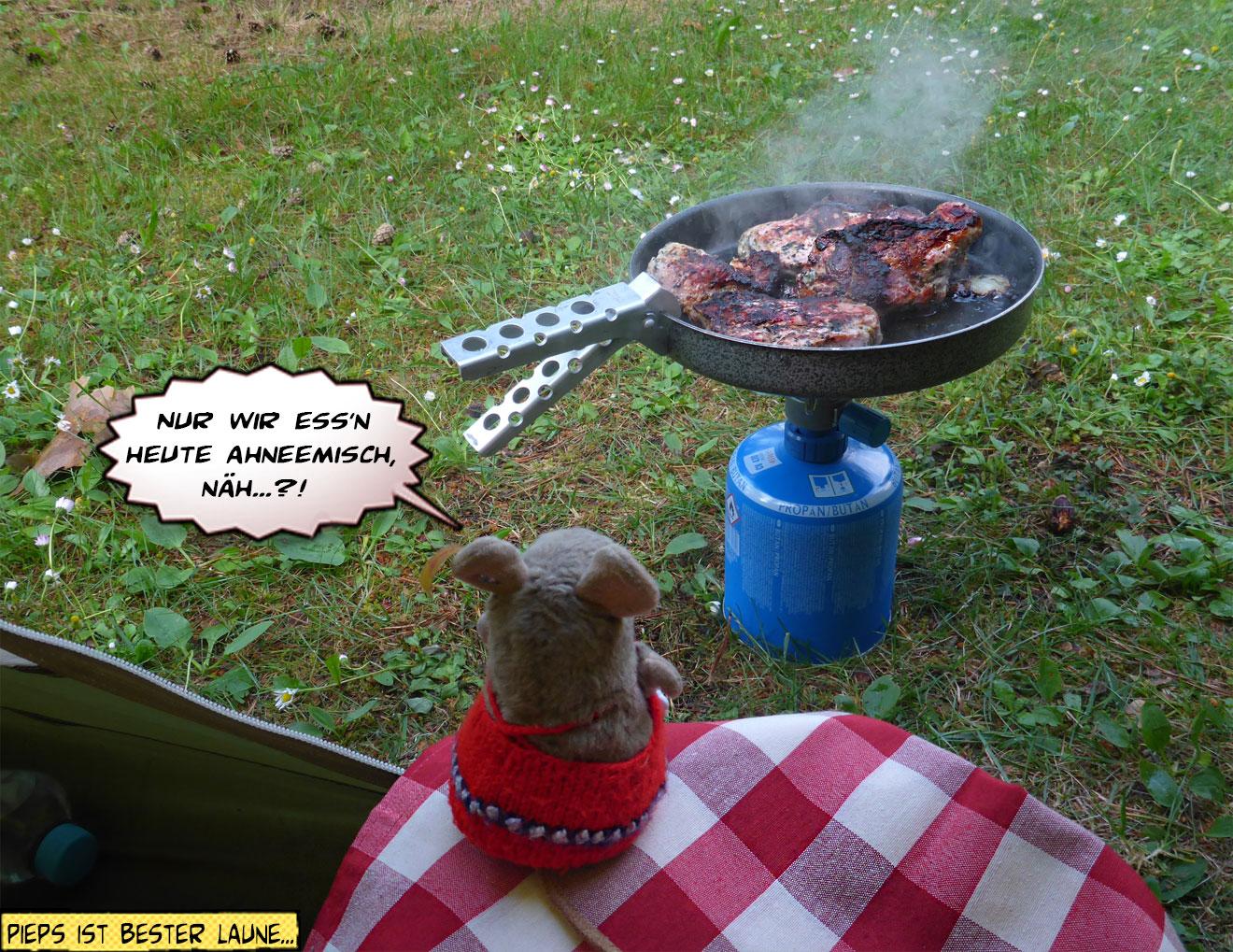 Fleisch braten beim Camping