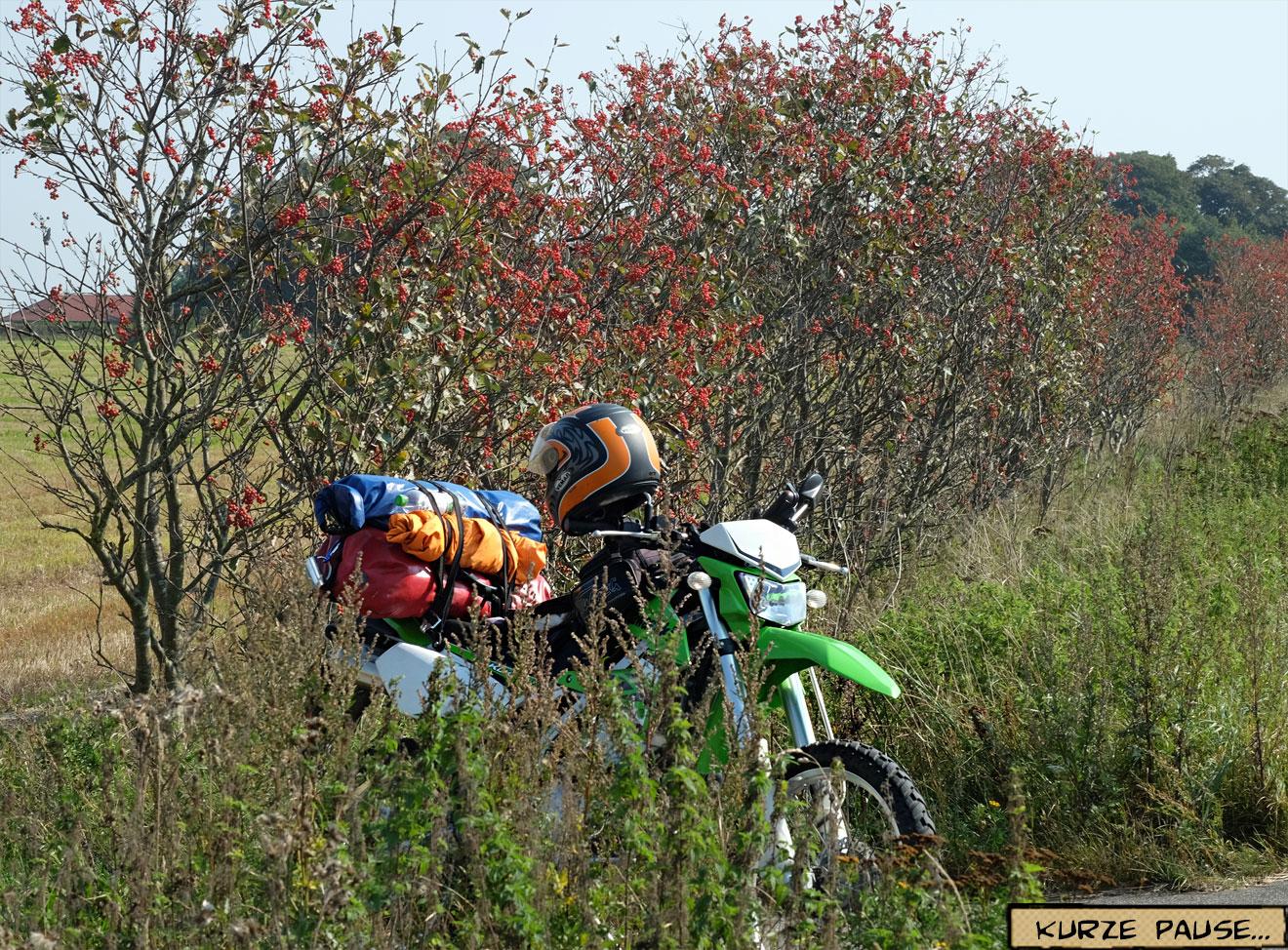 Motorrad Pause am Wegrand