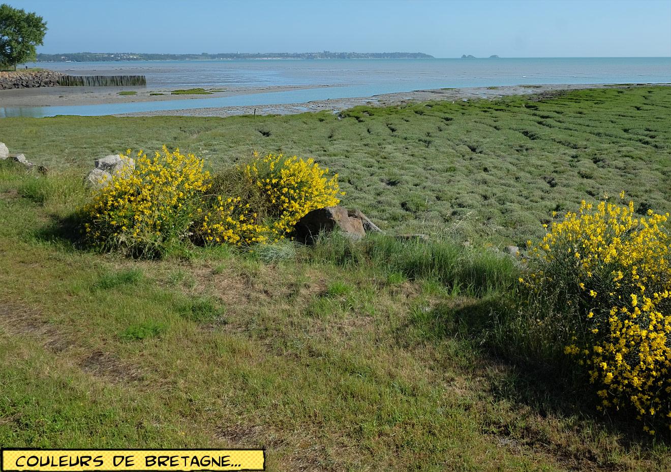 Meer in der Bretagne