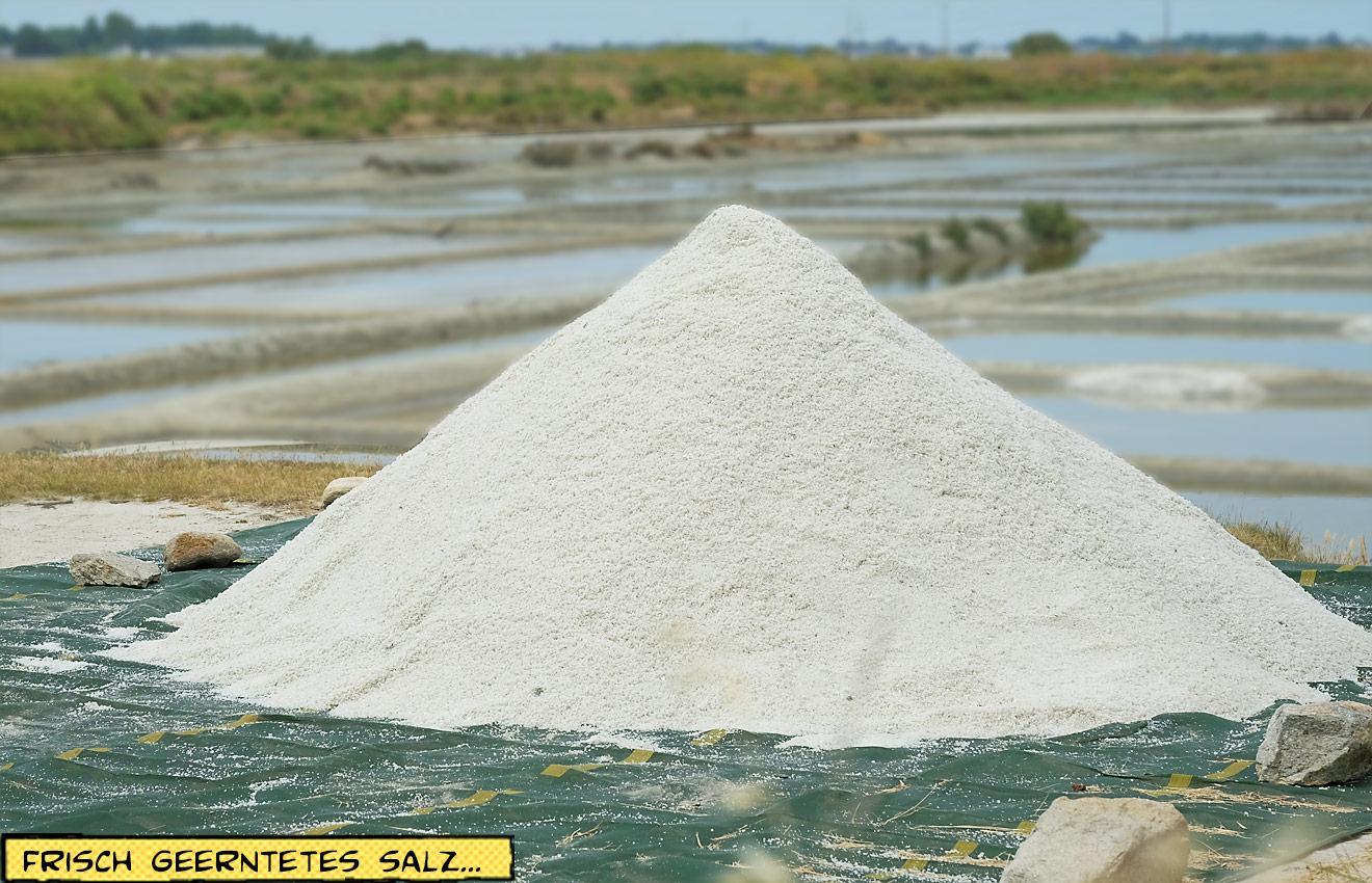 Salzernte großer Haufen Salz