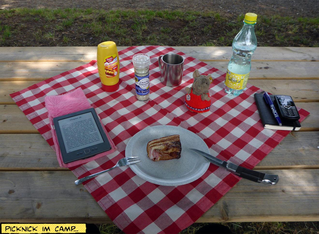 Karierte Picknickdecke