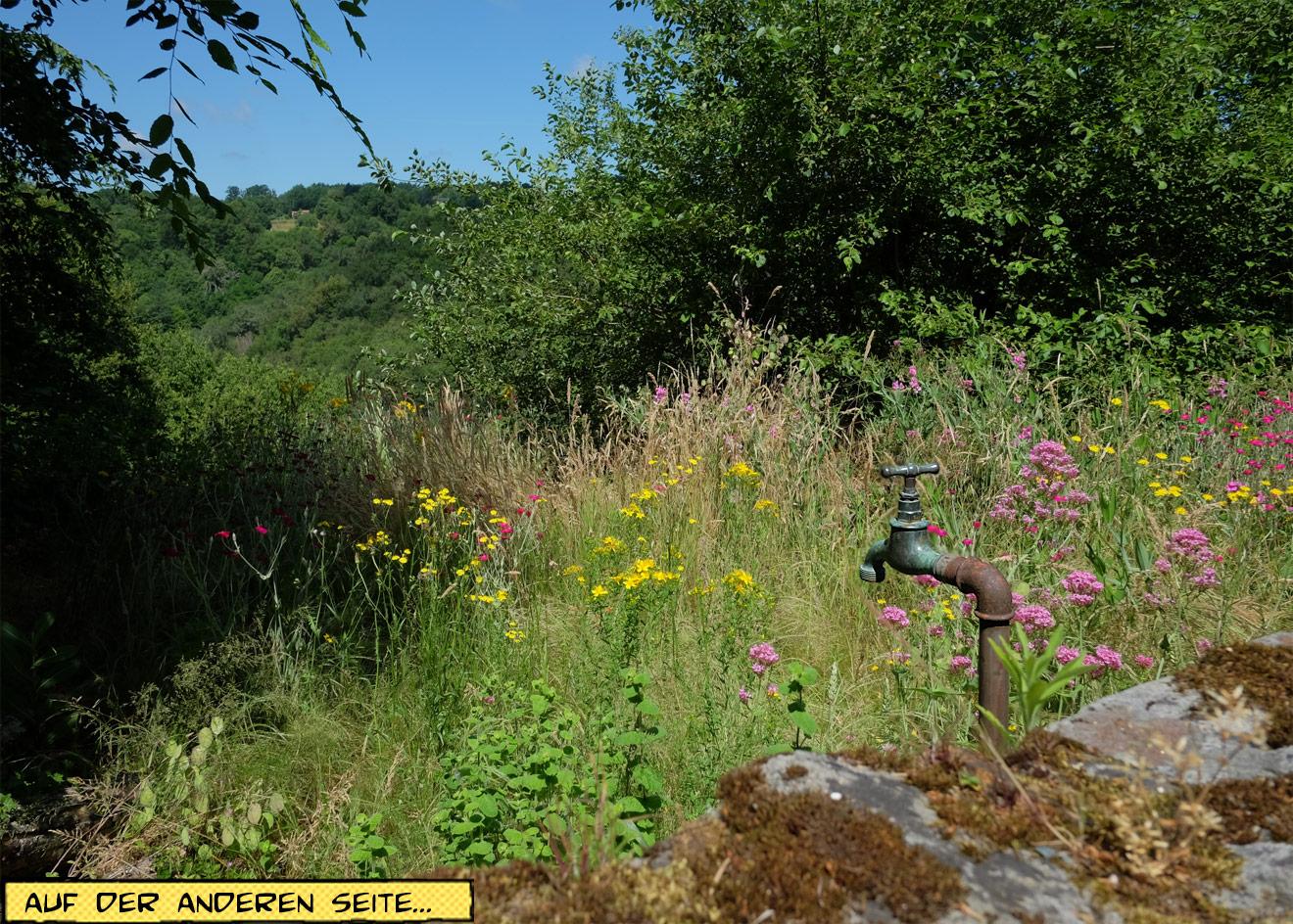 Blumengarten Wasserhahn