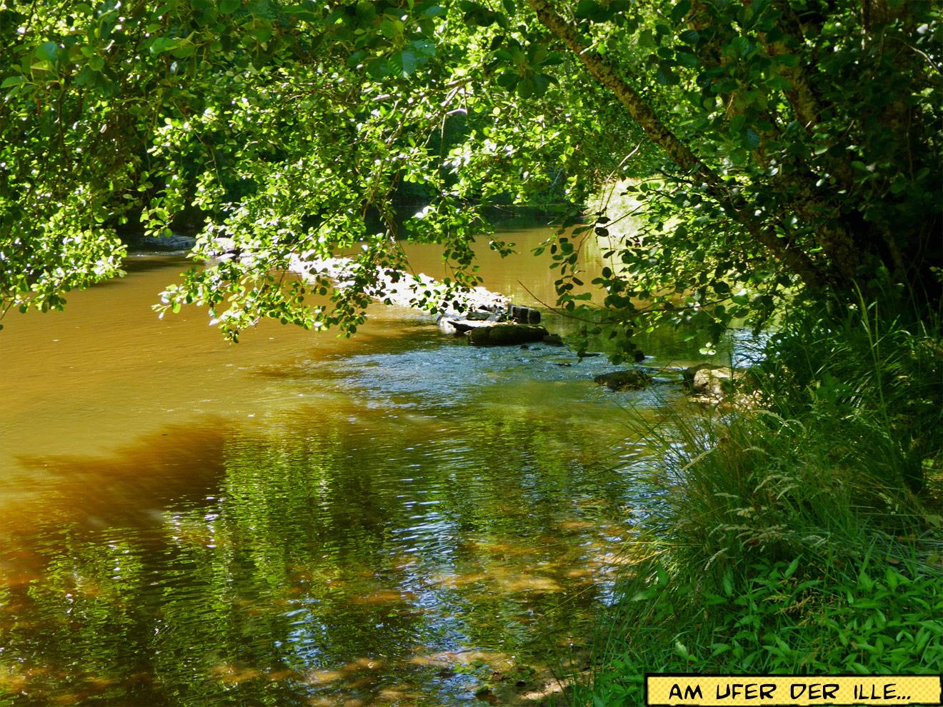 Flussufer der Ille
