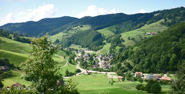Blick auf ein Tal im Breisgau