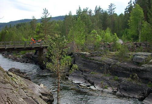 Eine alte Brücke im Wald bei Hovin