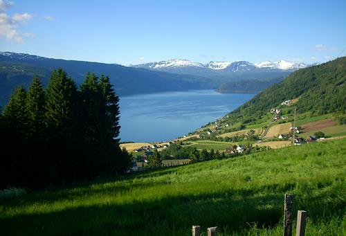 Blick vom Snøvegen auf den Fjord