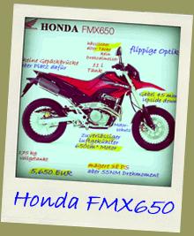 Honda FMX650 Funduro