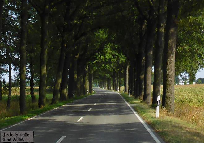 Landstraße Allee
