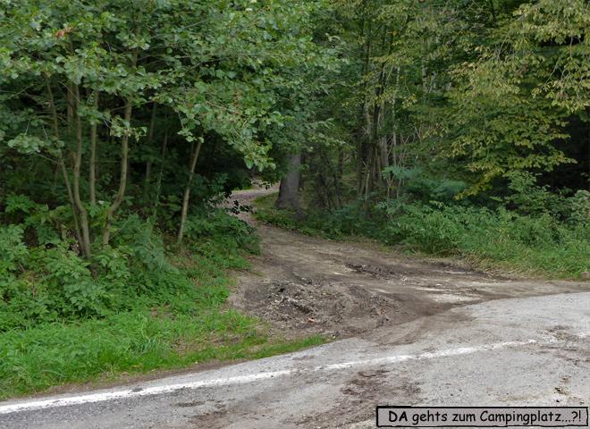 Waldweg Tschechien