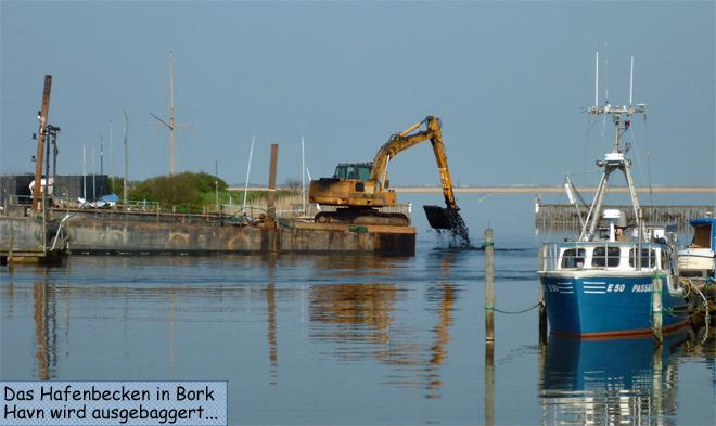 Bork Havn Bagger