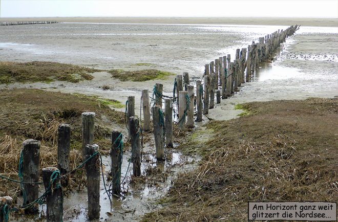 Mandø Ebbe Strand
