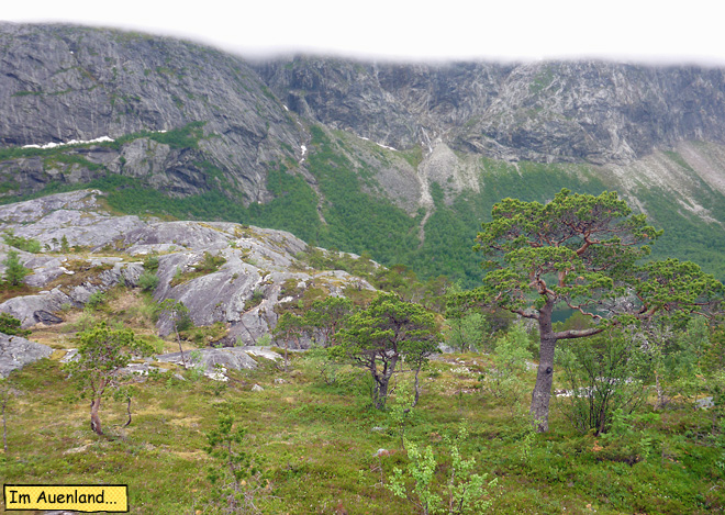 Landschaft in Norwegen