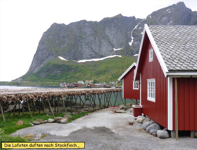Stockfisch und Rorbua Lofoten