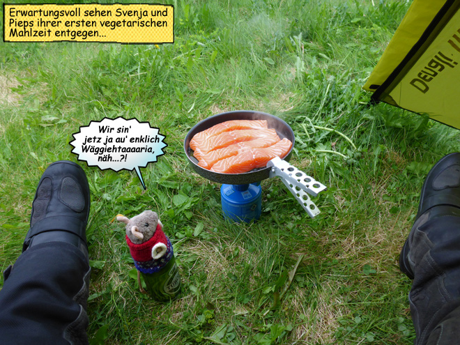 Lachs braten