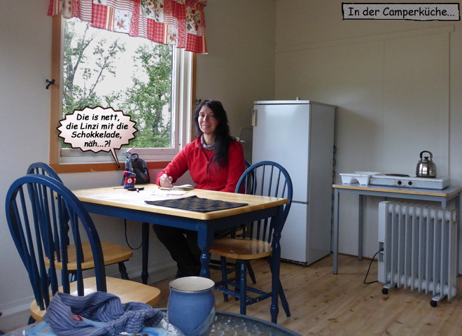 Svenja in der Camperküche