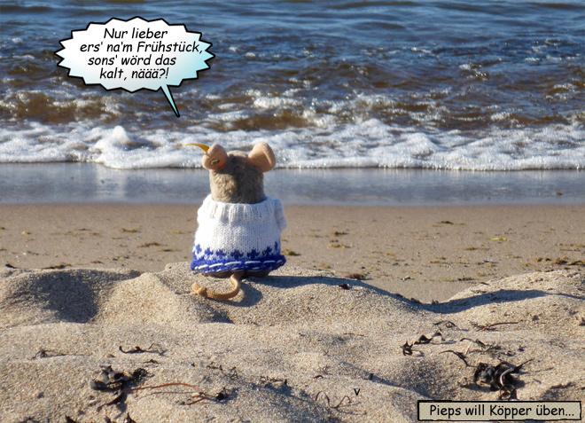 Pieps am Strand