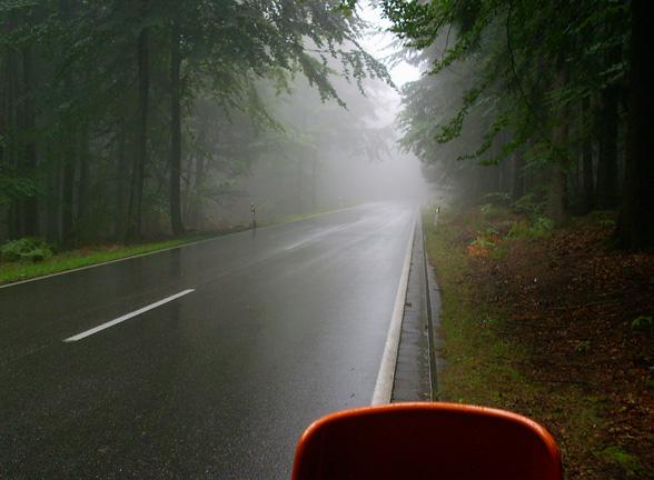 Pfälzerwald bei Kaiserslautern