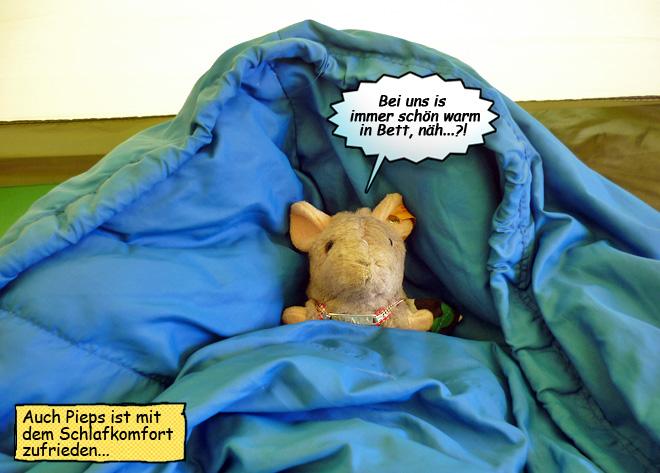 Daunenschlafsack Komfort