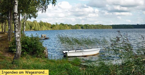 Landschaft mit Seeufer in Schweden