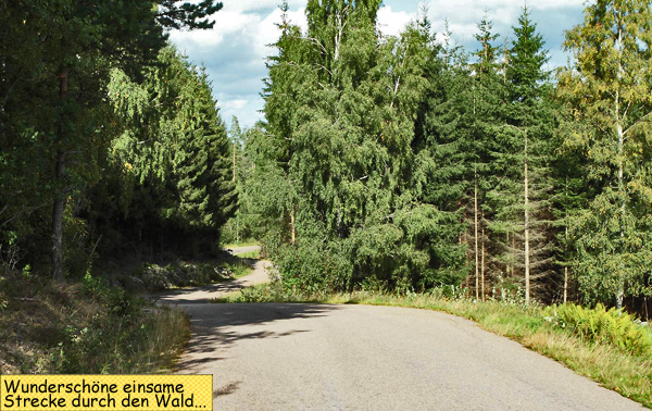 Straße durch den Wald in Schweden