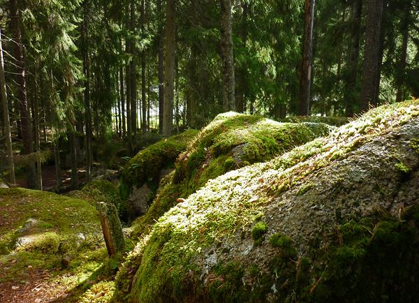 Tiveden Nationalpark Stigmanspasset Schweden