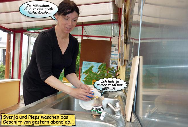 Svenja und Pieps Abwasch