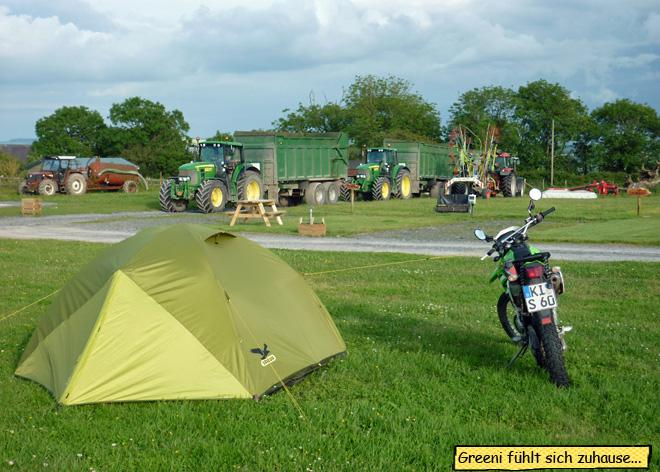 Cardigan Farm Camping